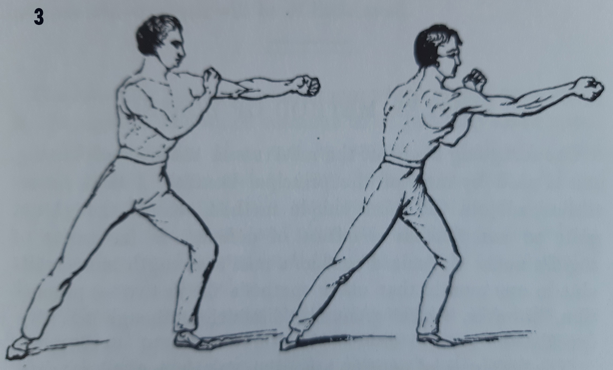 3. Donald Walker 1840 The forgotten science of the vertical punch